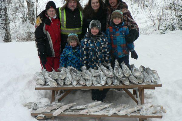 Pêche blanche en famille lottes et brochet